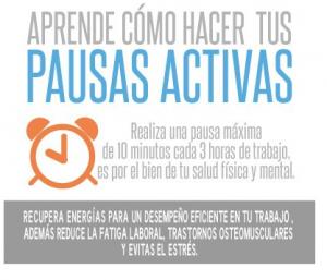 pausas_portada
