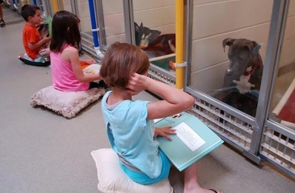 blog-niños-lectura-perros
