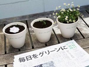 Periódico y flores