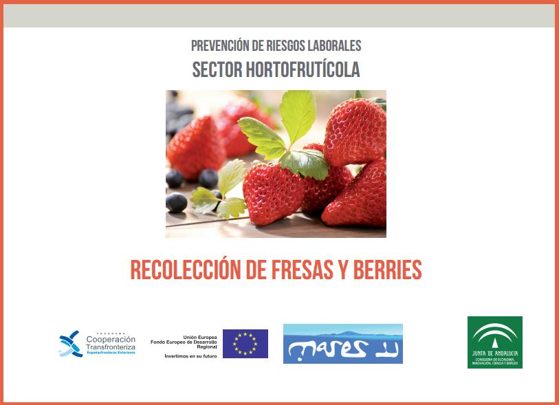 Prevención en la recogida de la fresa