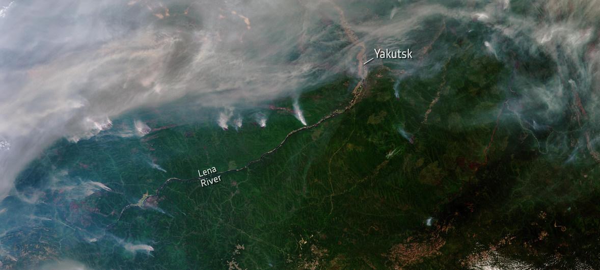 Incendios y cambio climático