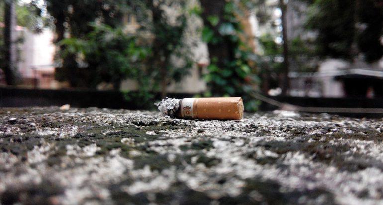 ¿Perjudica el tabaco al medio ambiente?